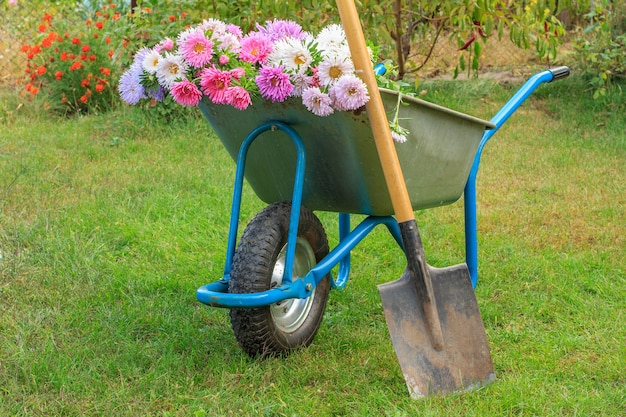 여름 정원에서 일 후. 컷아웃된 꽃과 푸른 잔디에 스페이드가 있는 수레.