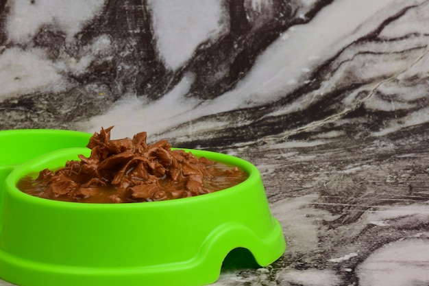 灰色の木の板を背景に、猫や犬に餌を与えるための乾燥した食べ物で満たされた緑色のプラスチックプレートがあります。右側に碑文や広告の場所があります