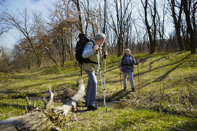 Coppie invecchiate della famiglia dell'uomo e della donna in attrezzatura turistica che cammina al prato verde