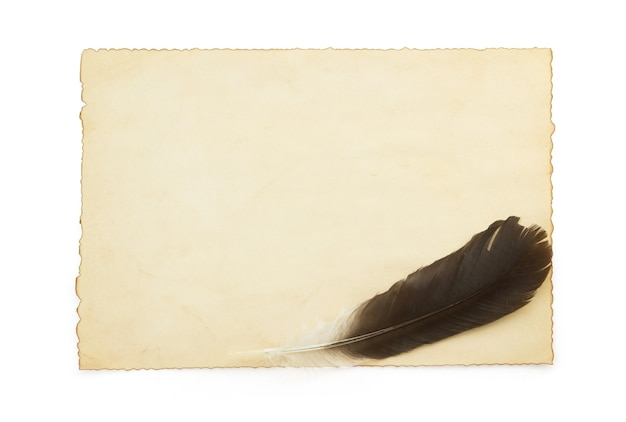 Aged paper and feather isolated