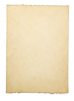 세 종이 흰색 절연