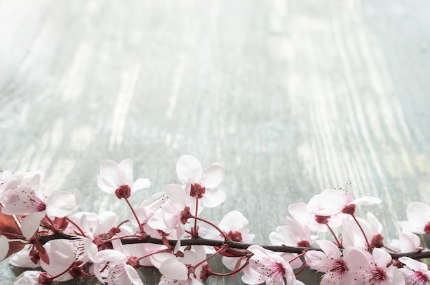 Старый деревянный стол с веткой, полной розовых цветов