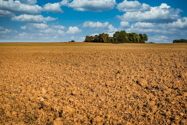 収穫後の麦畑と青空の農業背景。