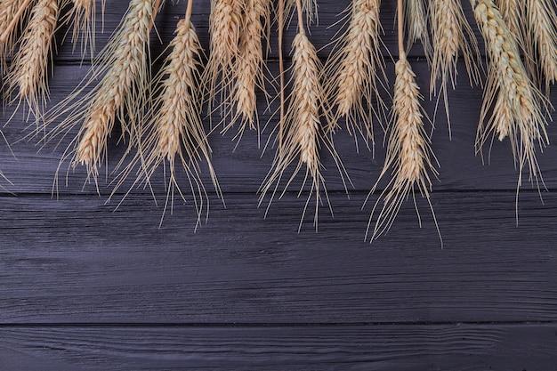 Зерновые сельскохозяйственные культуры на черном фоне и копией пространства