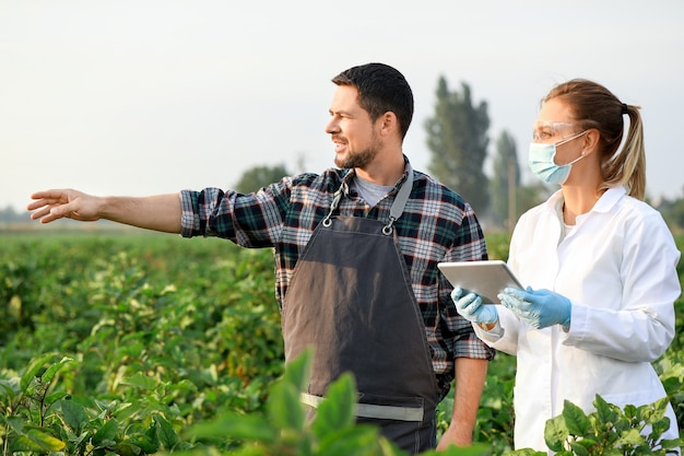 Agricultural engineers working in field