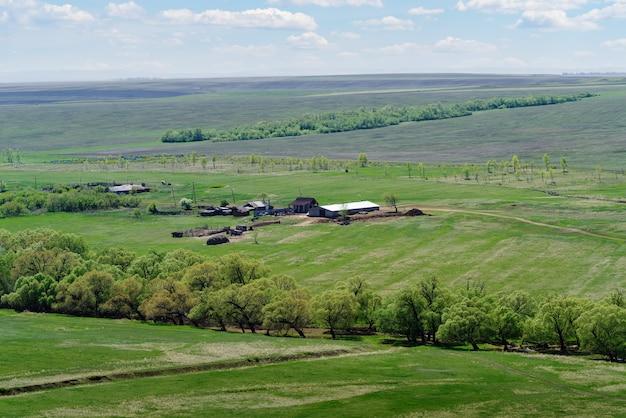 러시아 voskresenovka orenburg 지역 마을 근처 스프링 필드 사이의 농업 농장