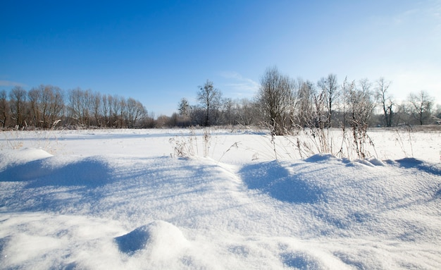The agricultural field covered with snow in a winter season