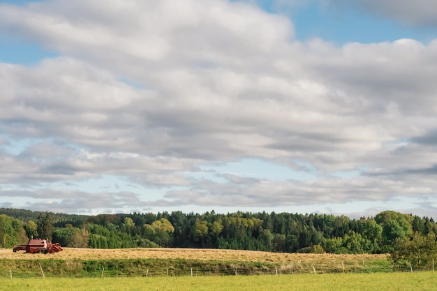 흐린 하늘 아래 푸른 나무로 둘러싸인 농업 분야