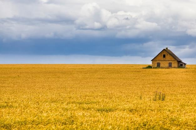 真ん中に農場がある農地