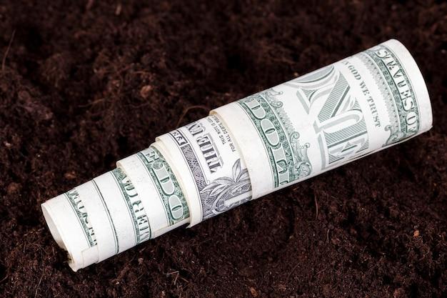Сельскохозяйственное поле с плодородной почвой и американскими деньгами, американские доллары в почве сельскохозяйственного поля.