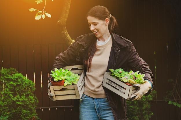 Фото сбора урожая