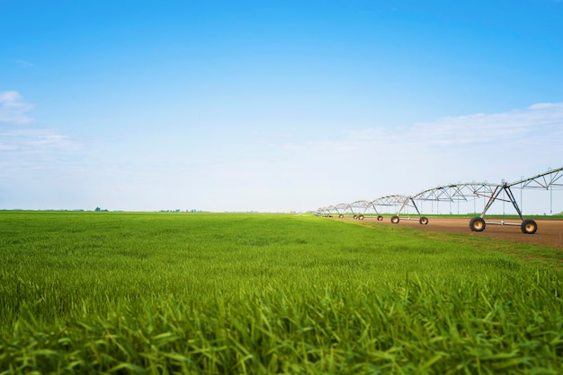 Agricultural irrigation system in the field watering crops.