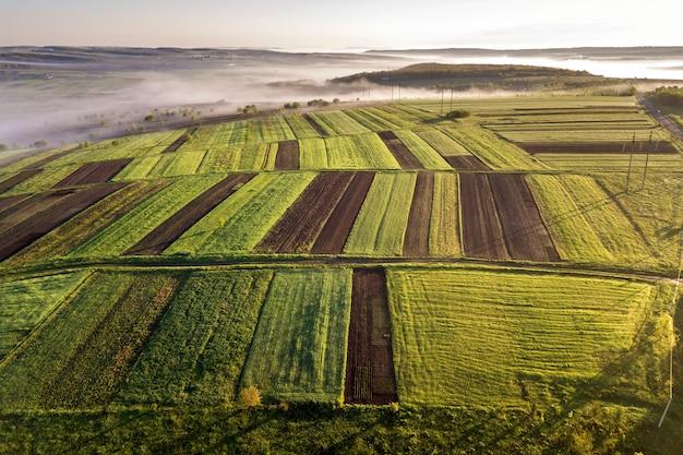 Аграрный ландшафт от воздуха на солнечном весне рассвете. зеленые и коричневые поля, утренний туман.