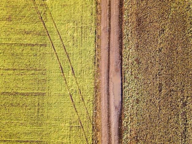 空気からの農業景観。日当たりの良い緑と茶色のフィールドの背景の間のまっすぐ狭い地上道路