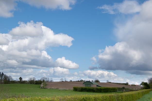 파란색과 흐린 하늘이 필드에 농업 보육원과 식물.