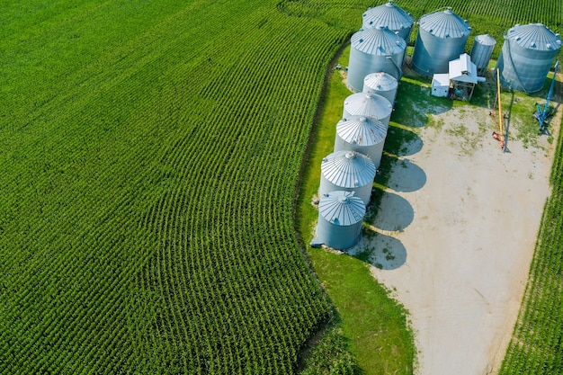Agricultural products storage with agro elevator on silver silos for processing drying cleaning of panoramic view