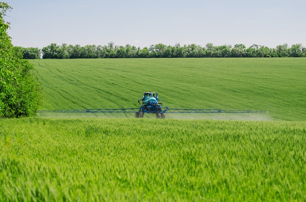 Сельскохозяйственные опрыскиватели, распыляющие химикаты на молодой пшенице