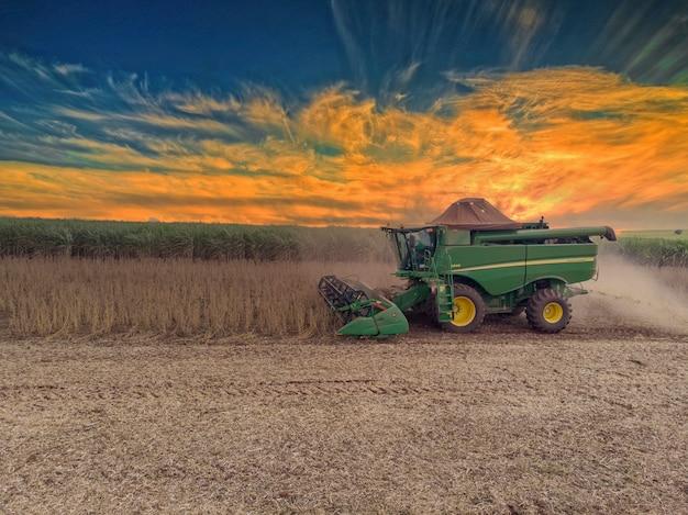 Сельскохозяйственный трактор для уборки сои в поле - педернейрас-сан-паулу-бразилия - 20.03.2021.