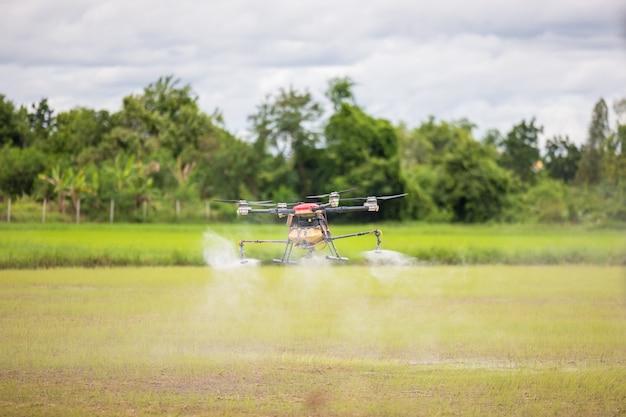 농업용 드론이 논 위를 날아 비료를 뿌리고, 산업용 드론이 논과 논에 화학 물질을 뿌리는 고해상도 사진