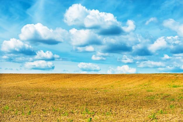 농업 분야와 구름과 푸른 하늘입니다.