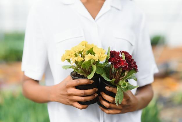 Управление сельским хозяйством. улыбающаяся афро-американская девушка проверяет цветочную плантацию в теплице, вид сбоку, свободное пространство