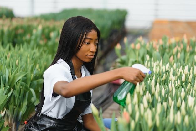 Управление сельским хозяйством. улыбающийся афроамериканец поливает цветы в теплице, вид сбоку, свободное пространство