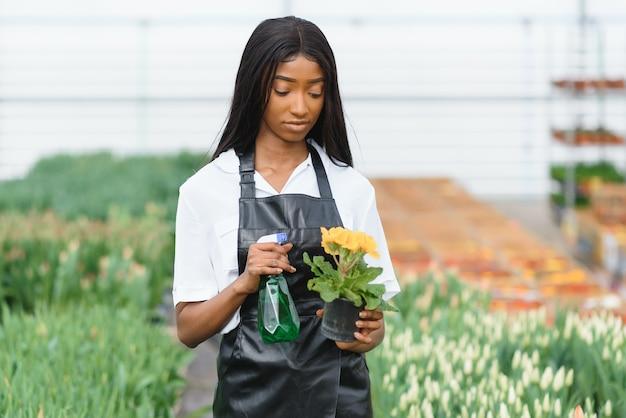 Управление сельским хозяйством. улыбающийся афроамериканец, проверяющий цветы в теплице, вид сбоку, свободное пространство