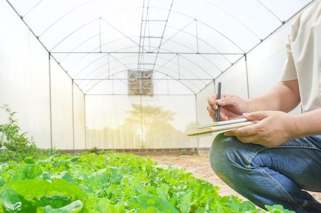 農業検査プラントの農業