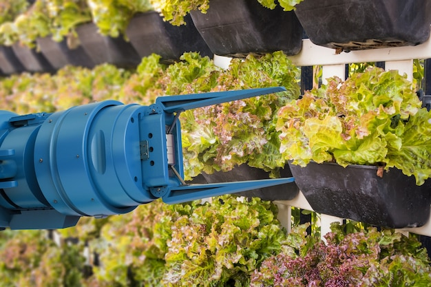Agriculture technology concept with robotic farmer spray water