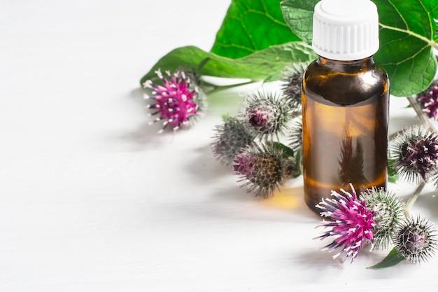 Agrimony 우엉 에센셜 오일 작은 병. 꽃 스파이크와 잎