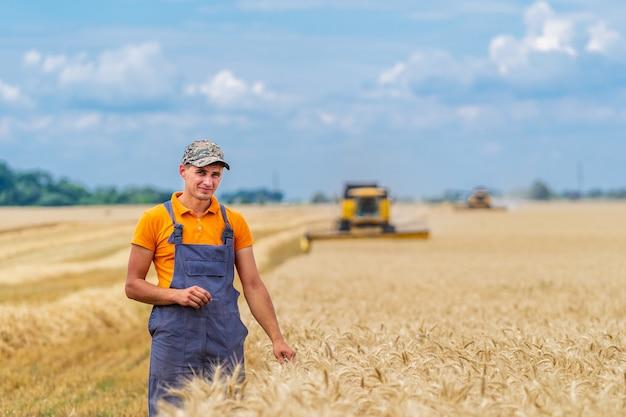 小麦畑での農業プロセス。農夫と重い技術。田園風景。