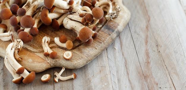 木製のテーブルの上のagrocybeaegeritaキノコ(pioppino) Premium写真