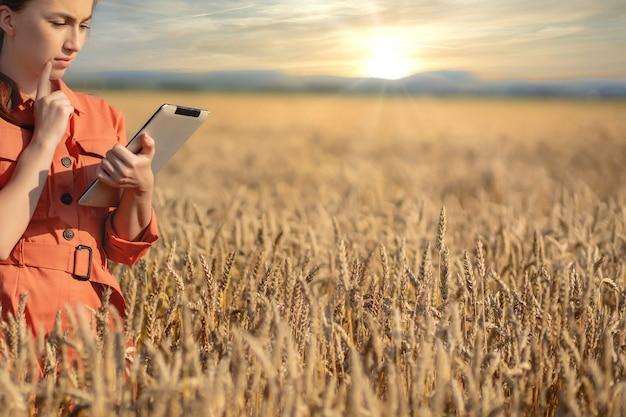 농업 경제학자가 곡물 분야를 확인하고 태블릿에서 클라우드로 데이터를 보냅니다.
