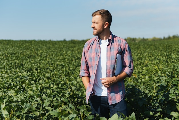 Agronomist or farmer examining crop of soybeans field