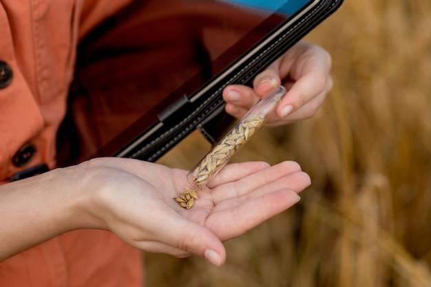 Фермер-агроном с цифровым планшетным компьютером на пшеничном поле с помощью приложений и интернета