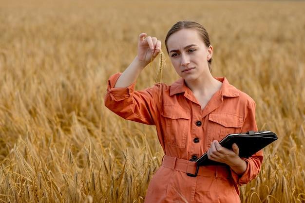 Агроном, держащий пробирку с зернами ячменя в поле, крупным планом. зерновое хозяйство, после испытания пшеницы