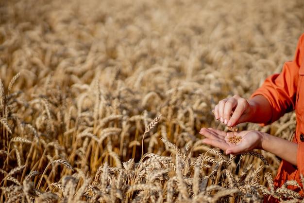 Агроном, держа пробирку с образцом в пшенице