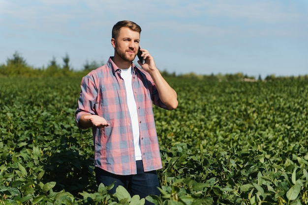 농장 들판에서 자라는 콩 작물을 검사하는 농업 경제학자. 농업 생산 개념입니다. 젊은 농업 경제학자는 여름에 들판에서 콩 작물을 조사합니다. 콩밭에 농부