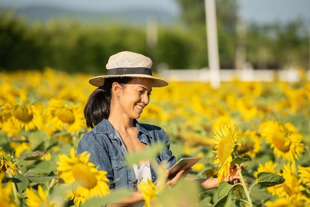 Агроном с планшетом в руках работает в поле с подсолнухами. совершать продажи в интернете. девушка работает в поле, занимаясь анализом роста растений. современные технологии. концепция сельского хозяйства.
