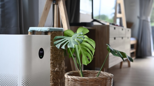 Air purifier with digital monitor screen and house plant on the wooden floor in living room.