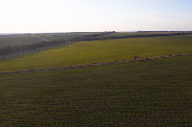Airbrush photography of a green field from a height. blue sky.