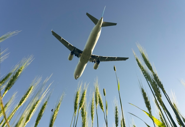 Airplane flight on the blue summer sky. takeoff or landing of a passenger plane with traveling tourists. air travel and travel industry concept. high quality photo