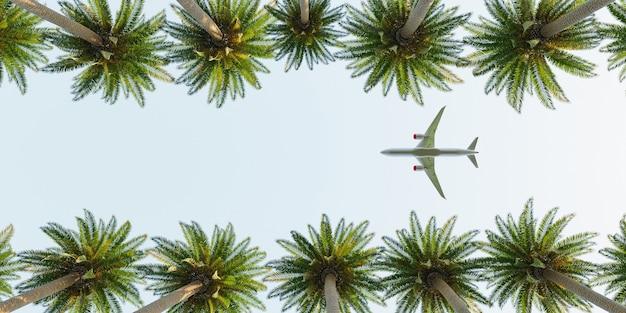 夏のヤシの木の上を飛ぶ飛行機