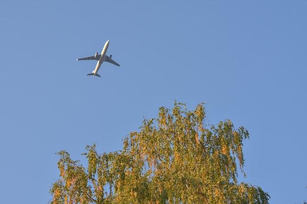 Самолет в небе на фоне пожелтевшего дерева