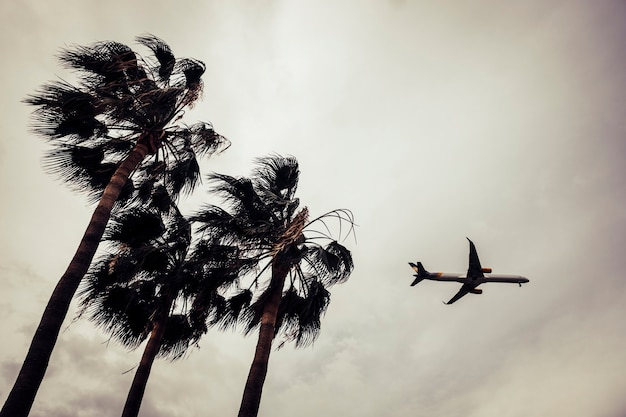 Airplane in the sky with trees in foreground