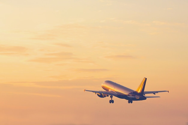 Airplane taking off and rising high in sunset sky holiday concept Premium Photo