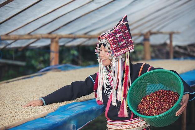 Akhaの女性は微笑んでコーヒー豆のかごを運んだ