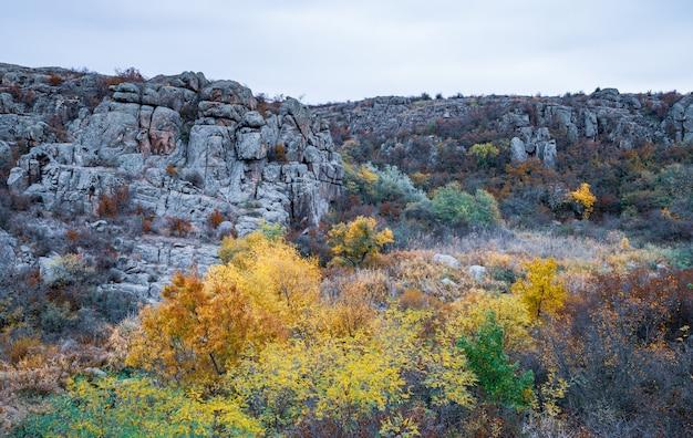 Aktovsky canyon ukraine 가을 나무와 주위에 큰 돌 바위