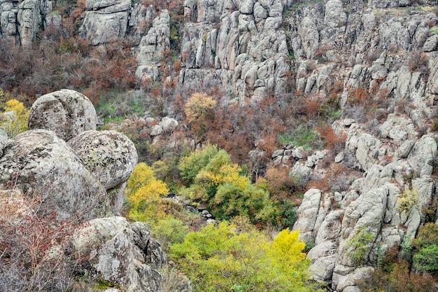 Aktovsky canyon, ukraine. autumn trees and large stone boulders around