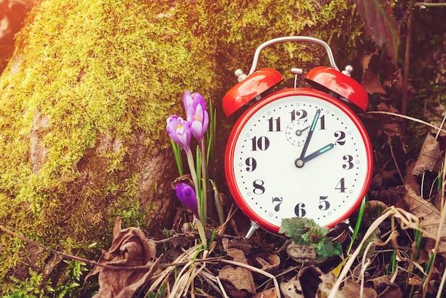 봄 자연에 알람 시계
